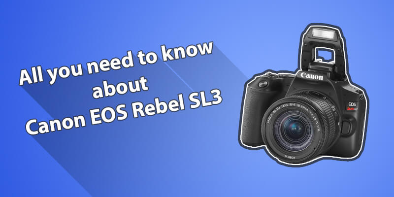 The Honest Canon EOS Rebel SL3 Review
