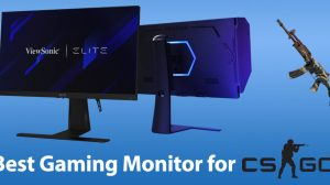 Best Monitor for CS GO for Gaming!