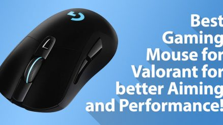 Best Mouse for Valorant for Gaming!